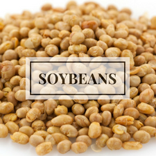 soybeans.png